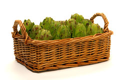 Artichokes in a Wicker Basket over White Stock Image