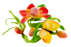 Article from colored wool butterfly and orchid Royalty Free Stock Image