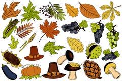Articles d'automne pour le thanksgiving dans le vecteur illustration stock