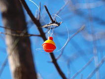 Articles de pêche dans l'arbre Image libre de droits