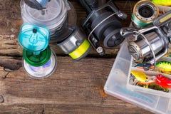 Articles de pêche sur le fond de l'usine sèche Image libre de droits