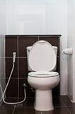 Articles sanitaires blancs dans la toilette Image libre de droits
