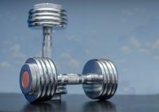 Articolo sportivo delle teste di legno Immagine Stock Libera da Diritti