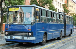 Articulated bus. Blue bus service at bus-stop in Budapest at daytime stock photos