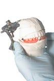 Articulateur dentaire de laboratoire avec la prothèse dentaire photo stock