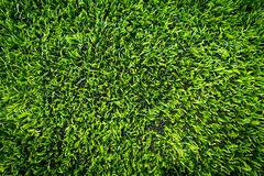 Artifact sport grass for indoor sport closed up. Top view Stock Photos
