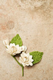Artifical flowers from vetiver. Stock Photo
