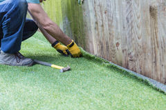 Artifical grass installation. Artificial grass being installed. It has been cut to size and rolled out and laid and is being nailed down along a fence. The Royalty Free Stock Photography