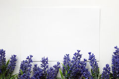 Artifical lavender flowers and blank paper Mockup. Royalty Free Stock Photography