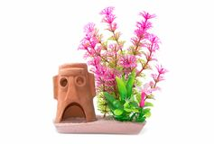 Free Artifical Plastic Water Plants For Aquarium Decoration Stock Photos - 101732193