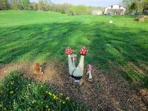 Artifical Red toadstool as decoration. Artificial Red toadstool as decoration. Seen at Organic Tulip Festival, Aroda, Virginia Stock Image