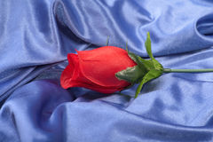 Artifical rough rose Royalty Free Stock Images