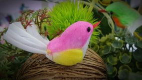 Artificial bird from cocoon Stock Photography