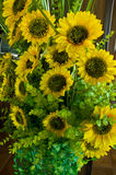 Artificial of blooming sunflowers royalty free stock images