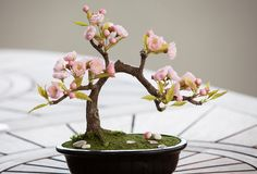 Artificial bonsai tree with flowers stock image