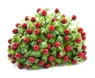 Artificial bouquet Stock Image