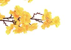 Artificial branch with yellow flowers. Royalty Free Stock Photo