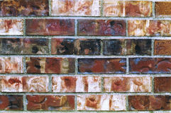 Artificial brick texture Royalty Free Stock Photography