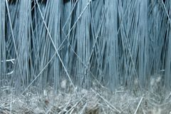 Artificial bristles royalty free stock photography