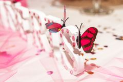 Butterflies decorations stock photography