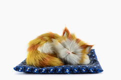 Artificial cat Royalty Free Stock Photos