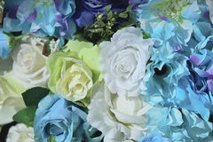 Artificial colorful of Rose flower decor background for text message. Royalty Free Stock Photo