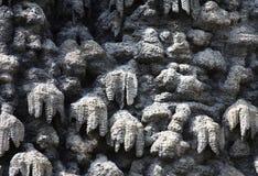 Artificial creation of stalactite wall Wallenstein Garden Royalty Free Stock Photos
