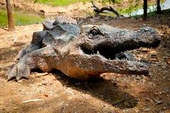 Artificial crocodile Stock Image