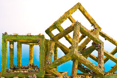 Artificial Cubed Reef Stock Photos