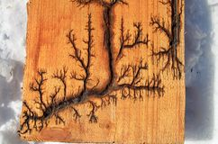The artificial drawing of a lightning on a tree. The lightning drawn with electric current on a wooden board stock photos