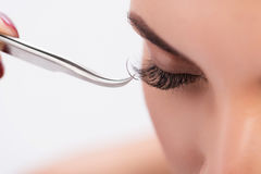 Artificial eyelash growth procedure in details royalty free stock image