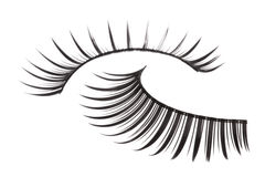 Artificial Eyelashes Isolated Royalty Free Stock Image