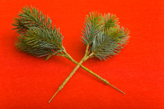 Artificial fir branches Royalty Free Stock Photos