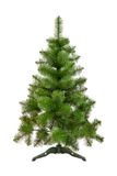 Artificial fir tree Stock Photos