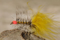 Artificial fishing fly Royalty Free Stock Photo