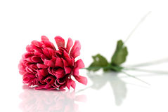 Artificial flower Royalty Free Stock Photos