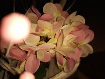 An artificial flower royalty free stock photography