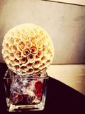 Artificial flower ball stock images