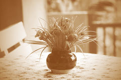 Artificial flower and jar on table Royalty Free Stock Photo