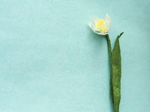 Artificial flower. Paper narcissus on light blue background. Horizontal. Copy space for your text Royalty Free Stock Photos