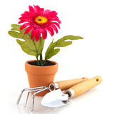 Artificial flower plant with gardening tools royalty free stock image