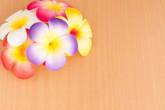 Artificial flower Royalty Free Stock Photo