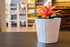 Artificial flower pot. Artificial orange flower in ceramic white pot on dark oak table top in coffee shop, selective focus and blurred background royalty free stock photos