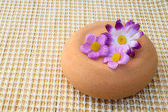 Artificial flower on pottery Stock Images