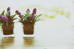 Artificial flower in small glass pot on a wooden table. Purple artificial flower in small glass pot on a wooden desk beside window Royalty Free Stock Photography