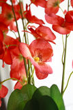 Artificial Flowers 2 Stock Images