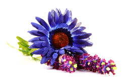 Artificial Flowers Stock Image