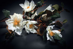 Artificial flowers. Royalty Free Stock Photos