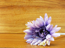 Artificial flowers gerbera on wooden background Stock Photo