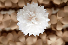 Artificial Flowers made of paper royalty free stock photos